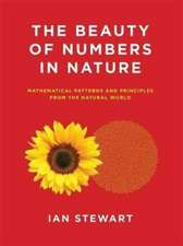 The Beauty of Numbers in Nature – Mathematical Patterns and Principles from the Natural World