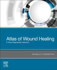 Atlas of Wound Healing: A Tissue Regeneration Approach