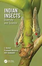 Indian Insects