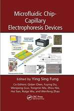 Microfluidic Chip-Capillary Electrophoresis Devices:  Architectures, Protocols, and Services