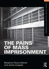 The Pains of Mass Imprisonment:  Energy, Climate Change and the Three Domains of Sustainable Development