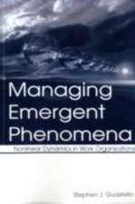 Managing Emergent Phenomena: Nonlinear Dynamics in Work Organizations