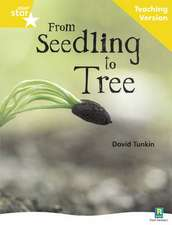 Rigby Star Non-fiction Guided Reading Yellow Level: From Seedling to Tree Teaching Version