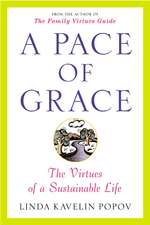 A Pace of Grace:  The Virtues of a Sustainable Life