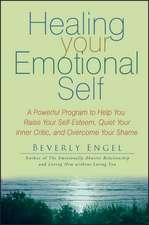 Healing Your Emotional Self: A Powerful Program to Help You Raise Your Self–Esteem, Quiet Your Inner Critic, and Overcome Your Shame