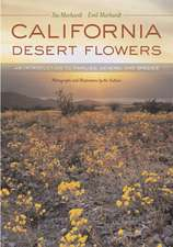 California Desert Flowers – An Introduction to Families, Genera, and Species