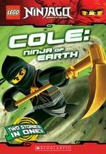 Lego Ninjago:  Ninja of Earth