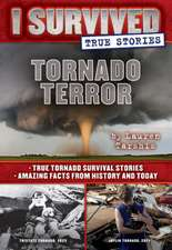 Tornado Terror (I Survived True Stories #3), Volume 3: True Tornado Survival Stories and Amazing Facts from History and Today