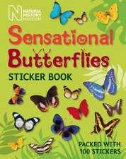 Sensational Butterflies Sticker Book