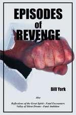 Episodes of Revenge