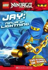 Jay:  Ninja of Lightning
