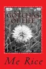 Gotchas of Life