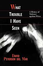 What Trouble I Have Seen – A History of Violence Against Wives (Paper)