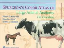 Spurgeon′s Color Atlas of Large Animal Anatomy: The Essentials
