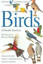 Birds of South America:  Rheas to Woodpeckers