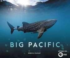 Big Pacific – Passionate, Voracious, Mysterious, Violent