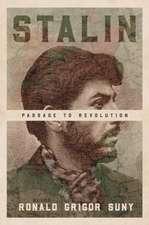 Stalin – Passage to Revolution