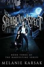 The Shadow Aspect