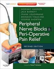 Peripheral Nerve Blocks & Peri-Operative Pain Relief:  An Introductory Text