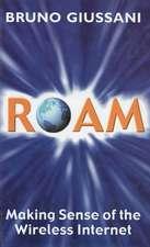 Roam:  Making Sense of the Wireless Internet
