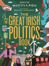 GREAT IRISH POLITICS BOOK