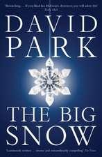 The Big Snow: rejacket