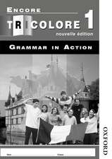Encore Tricolore Nouvelle 1 Grammar in Action Pack (x8)