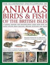 The Illustrated Encyclopedia of Animals, Birds & Fish of the British Isles:  A Natural History and Identification Guide with Over 440 Native Species fr