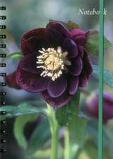 Notebook (Hellebore)