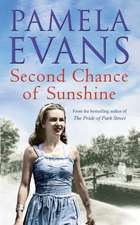 Second Chance of Sunshine