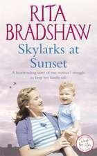 Skylarks At Sunset