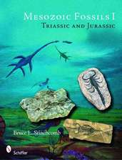Mesozoic Fossils: Triassic and Jurassic