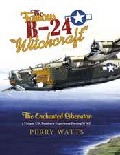 "The Famous B-24 ""Witchcraft"": The Enchanted Liberatora Unique U.S. Bomber's Experience During WWII"