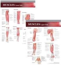 Lippincott Williams & Wilkins Atlas of Anatomy Musculature Chart Set