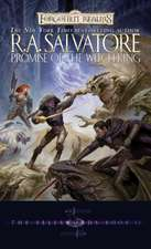 Promise of the Witch-King:  War of the Spider Queen Book VI