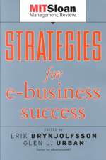 Strategies for E–Business Success