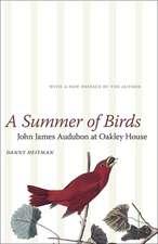 Summer of Birds