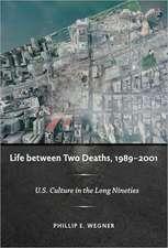 Life Between Two Deaths, 1989-2001:  U.S. Culture in the Long Nineties