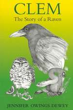 Clem:  The Story of a Raven