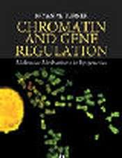 Chromatin and Gene Regulation: Molecular Mechanisms in Epigenetics