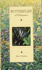 Butterflies of Delmarva