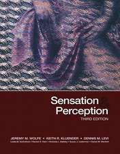 Wolfe, J: Sensation and Perception