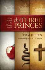The Three Princes:  Lifting the Veil on the Unseen World