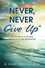 Never, Never Give Up:  If You're in a Storm, Look for the Rainbow