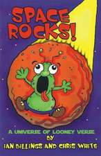 Space Rocks:  The Survival Guide for Break Ups & Broken Hearts