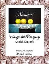 Nanduti, Encaje del Paraguay