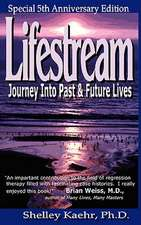 Lifestream:  Journey Into Past & Future Lives