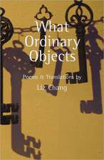 What Ordinary Objects