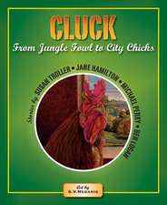 Cluck: From Jungle Fowl to City Chicks