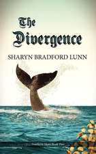 The Divergence